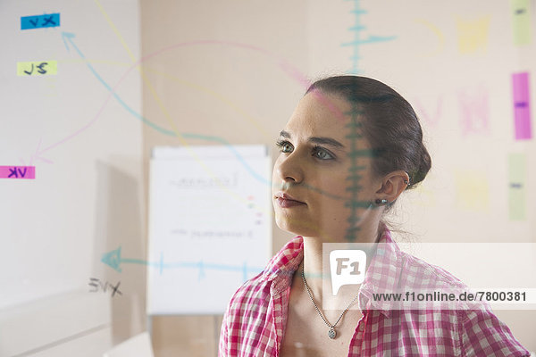 einsteigen  zeigen  Geschäftsfrau  Organisation  organisieren  sehen  Glas  arbeiten  Büro  jung