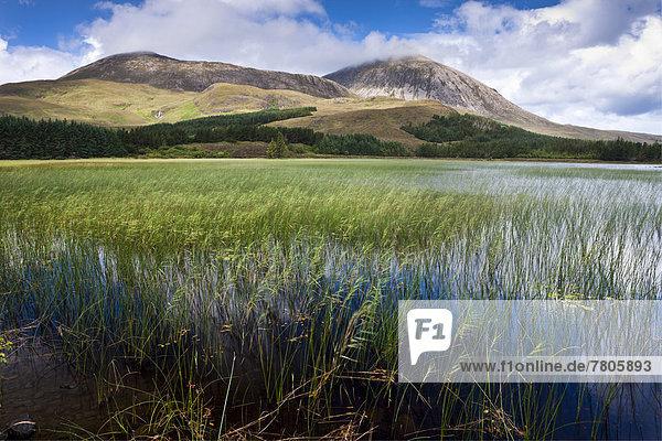 See  Loch Cill Chriosd
