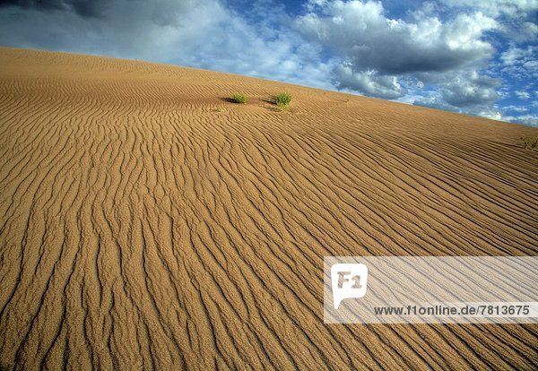 Verticle lines appear in the sand due to erosion at Great Sand Dunes National Park  Colorado.
