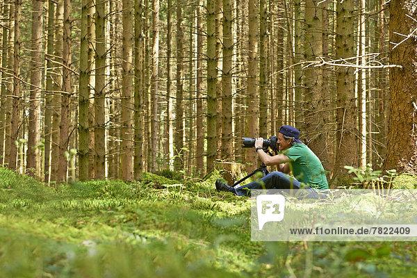 Fotograf beim Fotografieren in einem Fichtenwald
