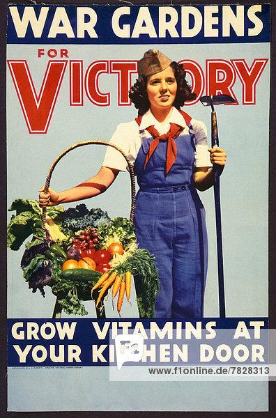 Vereinigte Staaten von Amerika  USA  Finanzen  Werbung  Soldat  Poster  Krieg  amerikanisch  explodieren  Zweiter Weltkrieg  II.