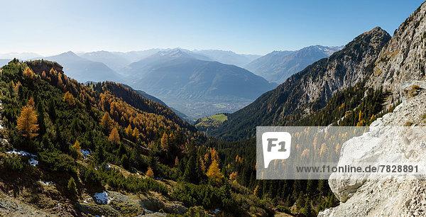 Trentino Südtirol Europa Berg Baum Landschaft Hügel Wald Holz Herbst Italien