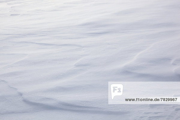 Detail  ice  ice-crystal  crystal  cold  lines  macro  pattern  structure  close-up  nature  snow  detail  drift  Switzerland  Europe  wind gust  winter  abstract  concepts  icy  froze  freezing  graphical  cold  small  snow-covered  snowy  white  wind  windy  breezy