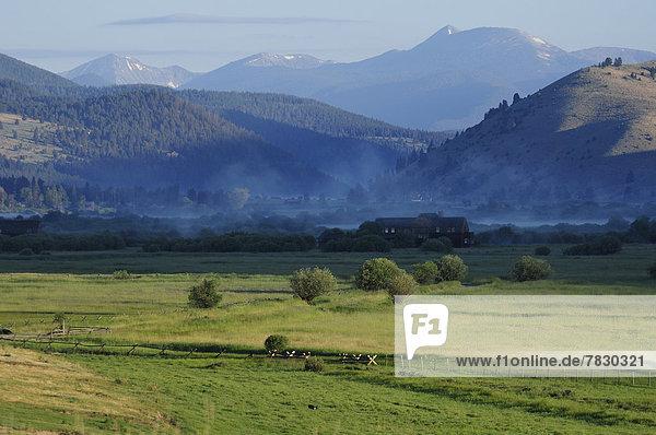 Vereinigte Staaten von Amerika USA Amerika Wohnhaus Morgen Dunst Natur Nordamerika Rocky Mountains Ranch