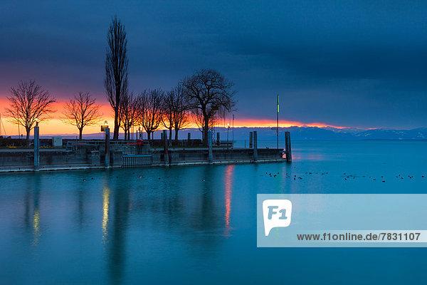 beleuchtet Hafen Europa Baum See Illumination Schweiz Bodensee Morgenstimmung beleuchtet,Hafen,Europa,Baum,See,Illumination,Schweiz,Bodensee,Morgenstimmung