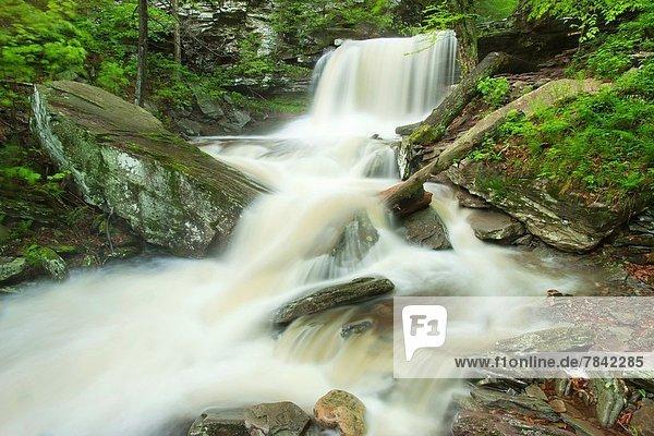 Vereinigte Staaten von Amerika  USA  Küche  Bach  Wasserfall  Frühling  Überschwemmung  Tal  Pennsylvania