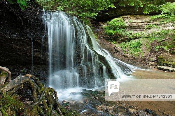 Vereinigte Staaten von Amerika  USA  Felsbrocken  Mühle  rennen  Bach  rutschen  Wasserfall  Höhle  Schlucht  Pennsylvania
