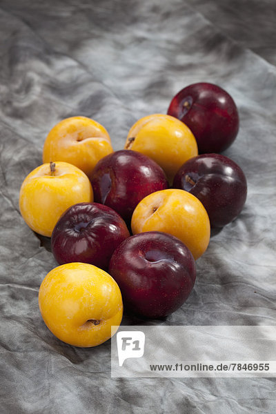 Red and yellow plums on grey background  close up