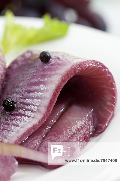 Herring in sherry vinegar with onions on plate  close up