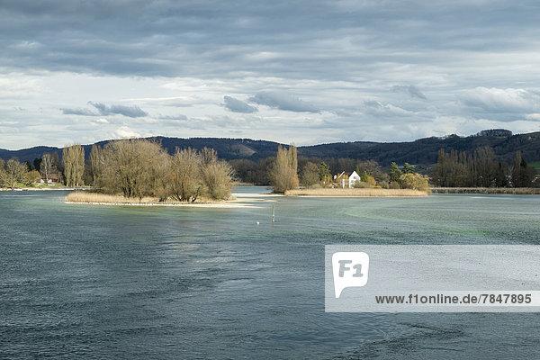 Schweiz  Blick auf den Rhein mit den Werdinseln Schweiz, Blick auf den Rhein mit den Werdinseln