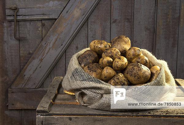 Deutschland  Kartoffeln im Sack auf Holz