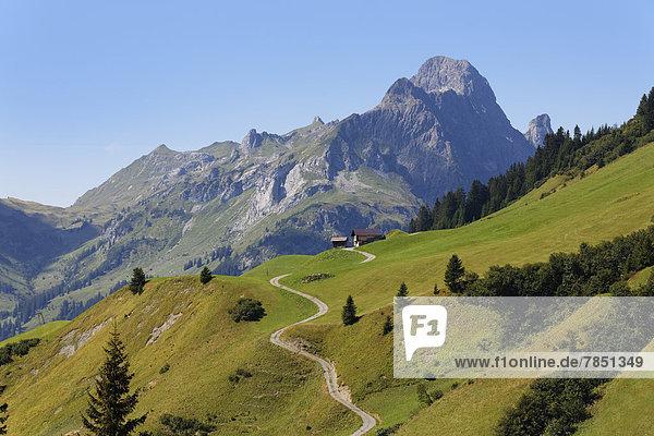 Österreich  Vorarlberg  Blick auf die Hochkunzelspitze im Bregenzerwald