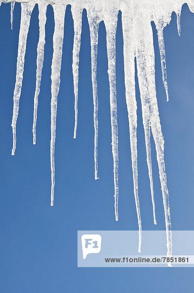 Österreich  Eiszapfen gegen den Himmel