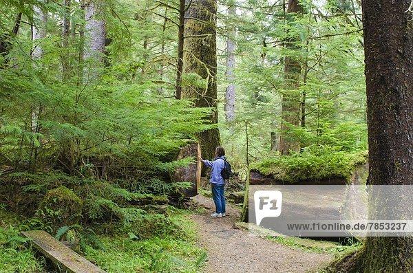 Nordamerika  British Columbia  Kanada