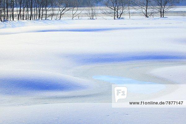 Schnee  Fukushima