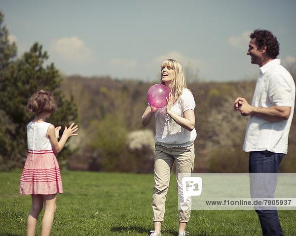 werfen  Ball Spielzeug