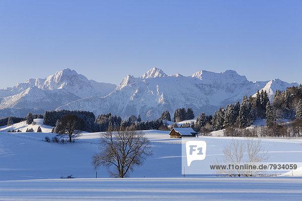 Winterlandschaft mit den Tannheimer Bergen