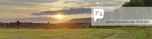 Sonnenuntergang im Frühling  Oberpfalz  Bayern  Deutschland