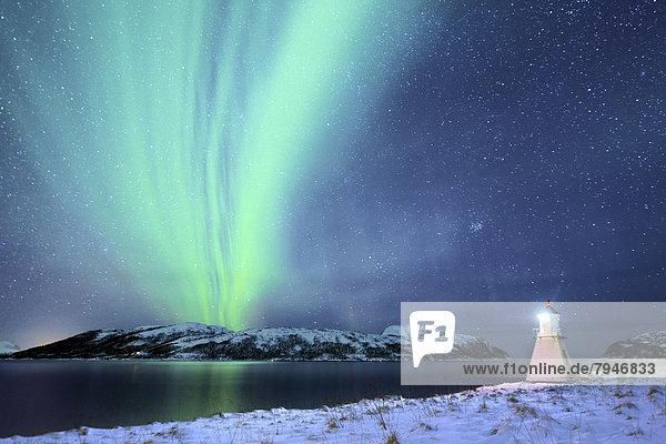 Polarlicht über Fjord mit Leuchtturm im Winter