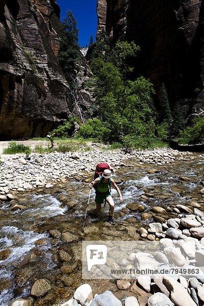 Frau  Reise  waten  Rucksackurlaub  Fluss  Regenwald  Utah