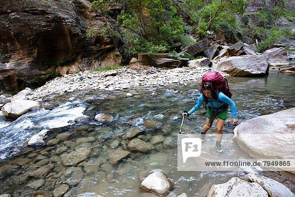 Anschnitt  benutzen  überqueren  Frau  Reise  Stange  Rucksackurlaub  Fluss  Regenwald  Kreuz  trekking  Utah