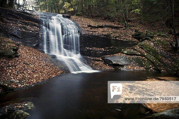 Laubwald  über  klein  Ereignis  Fluss  Herbst  Wasserfall