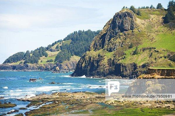 nahe  Steilküste  Küste  vorwärts  Oregon