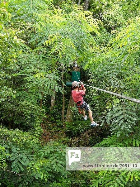 rutschen Junge - Person Regenwald Heiligtum jung Linie