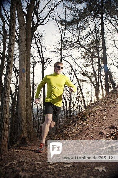 Laubwald  folgen  früh  Läufer