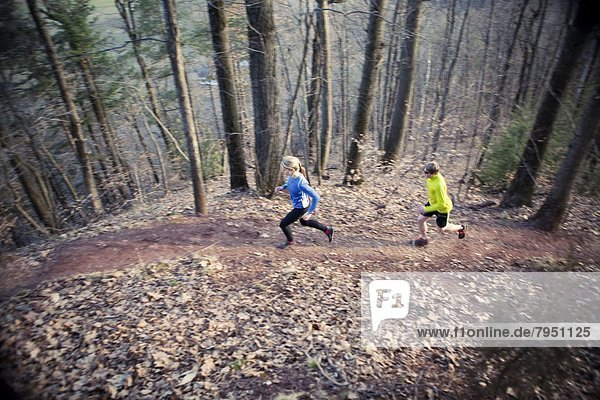 hoch  oben  Laubwald  Tag  folgen  rennen  früh  Läufer  2