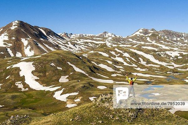 Mann  Wald  wandern  Colorado  Silverton  Tundra