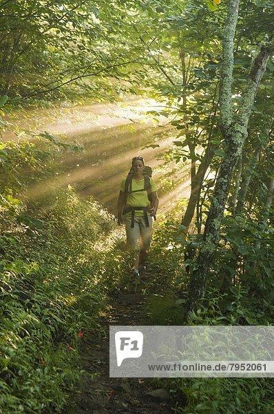 Frau  Wald  wandern  Sonnenlicht  Gott  North Carolina