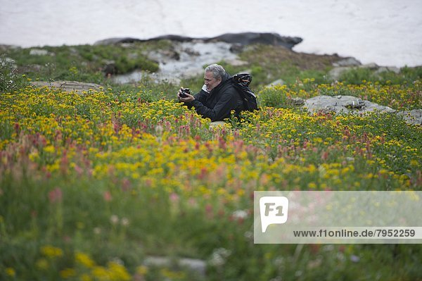A photographer in a thick field of wildflowers.