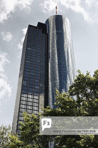 Deutschland  Hessen  Frankfurt  Blick auf den Main Tower
