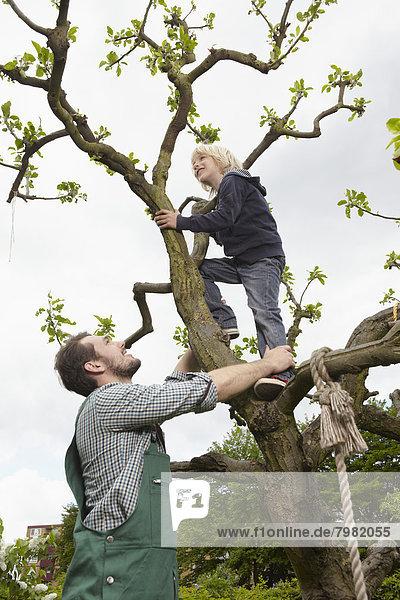Deutschland  Köln  Vater hilft Sohn beim Baumklettern  lächelnd