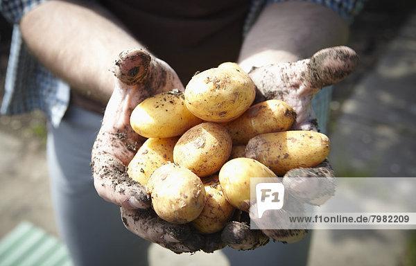 Junger Mann mit Kartoffeln  Nahaufnahme