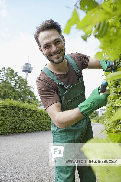 Portrait eines jungen Mannes  der Blätter schneidet  lächelnd