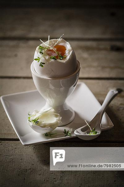 Spiegelei im Eierbecher mit Kresse und Löffel  Nahaufnahme