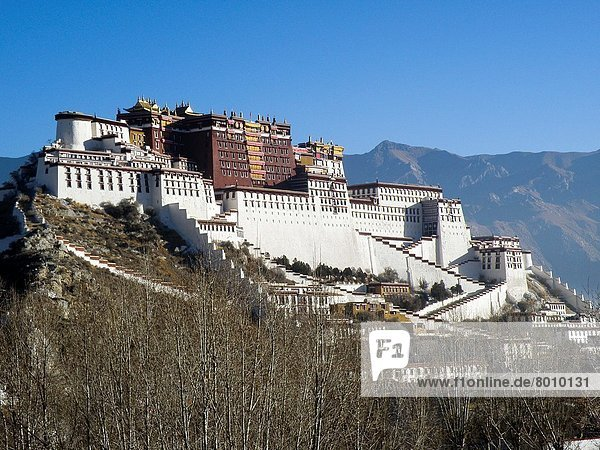 Potala Palace in Lhasa  Tibet  China