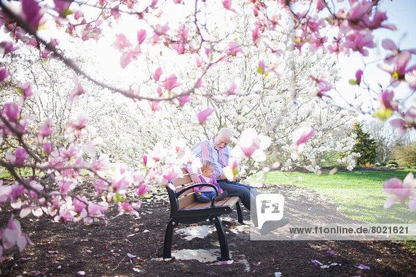 Großvater und Enkelin inmitten der Magnolienblüte