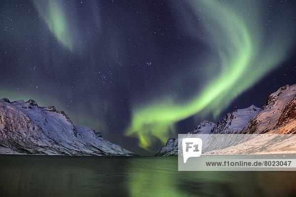 Polarlicht über Fjord mit schneebedeckten Bergen