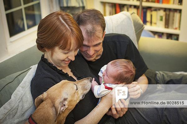 Neugeborenes neugeboren Neugeborene halten Menschlicher Vater Hund Verbindung grüßen Mutter - Mensch Baby