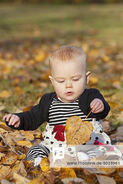 Herbst Mädchen Baby spielen