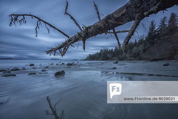 Nationalpark  Wolke  Strand  Ozean  Pazifischer Ozean  Pazifik  Stiller Ozean  Großer Ozean  6  Minute