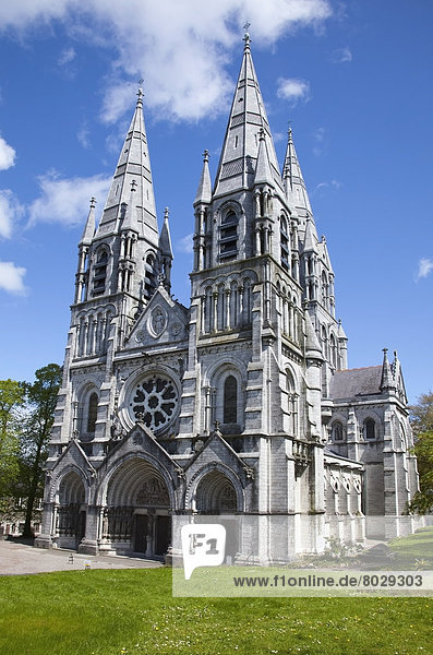 Saint fin barre's cathedral Cork city county cork ireland