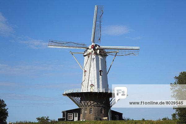 Windturbine  Windrad  Windräder  Himmel  blau