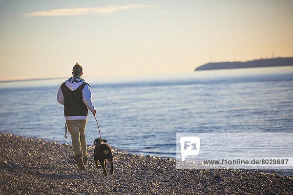 Jugendlicher  Amerika  Strand  Junge - Person  Sonnenuntergang  rennen  Hund  Hintergrund  Insel  Feuer  Koch  Verbindung  zeigen  Rottweiler  Alaska  Anchorage  Meeresarm