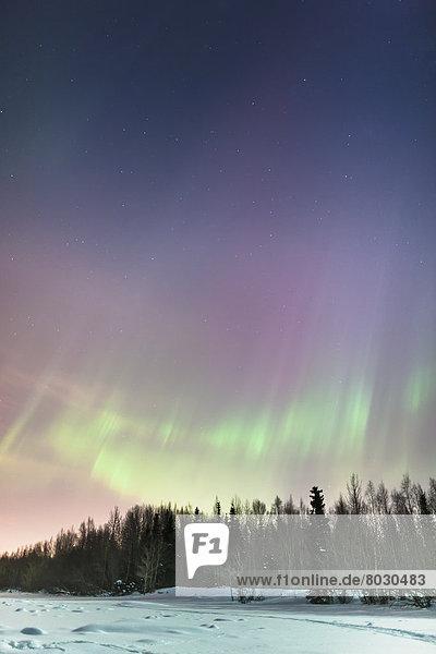 Winter  Amerika  Nacht  folgen  Himmel  über  Küste  Verbindung  Polarlicht  Alaska  Anchorage