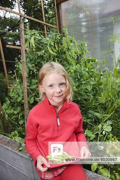 Vereinigte Staaten von Amerika USA heben halten Bett auf dem Schoß sitzen Garten jung Wachstum Erbse Mädchen voll