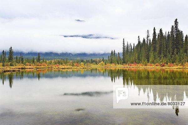 Farbaufnahme  Farbe  Spiegelung  See  Banff Nationalpark  Alberta  Kanada